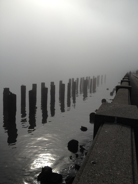 photoblog image foggy morning run pier 14 san francisco